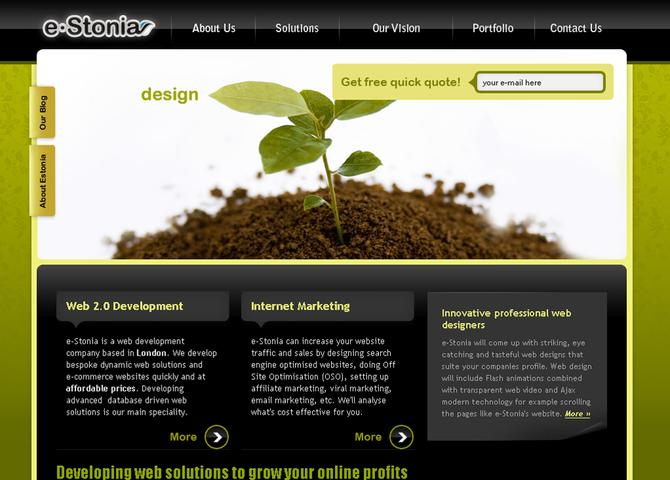 e-Stonia.co.uk Web Design and Development